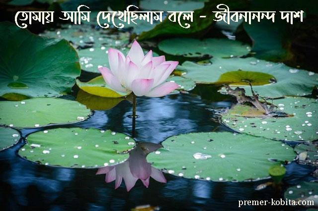 পদ্ম-ফুল-tomay-ami-dekhechilam-bole-jibanananda-das-podo-full