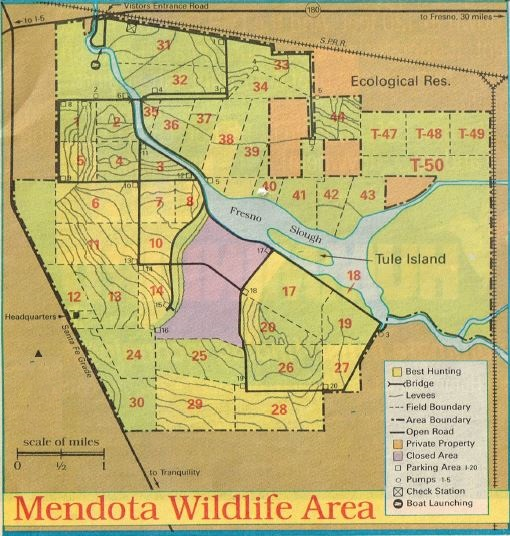 Duck Hunting Mendota Report