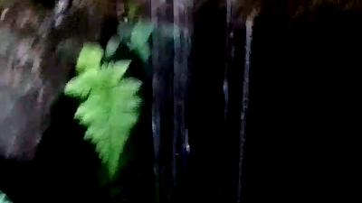 sumber bendo; sumber bendo singosari; sumber bendo kediri; sumber bendo probolinggo; sumber bendo pare; sumber bendo motor; sumber bendo klampok singosari malang; sumber air di malang; museum singosari; candi singosari; kek singosari; singosari malang; mata air di malang
