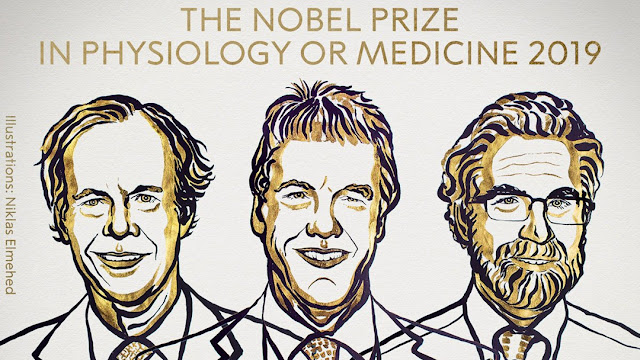 The 2019 Nobel Prize in Physiology or Medicine Winners