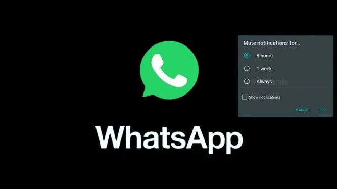 How to mute Groups and Chats on WhatsApp