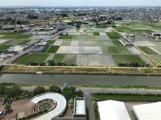 こしがや田んぼアート2017銀河鉄道999(6/9)