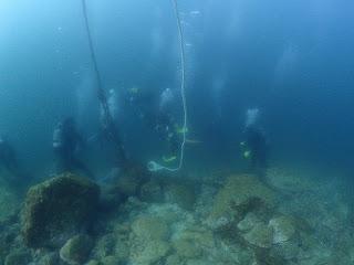 2021年10月10日の柏島ダイビング
