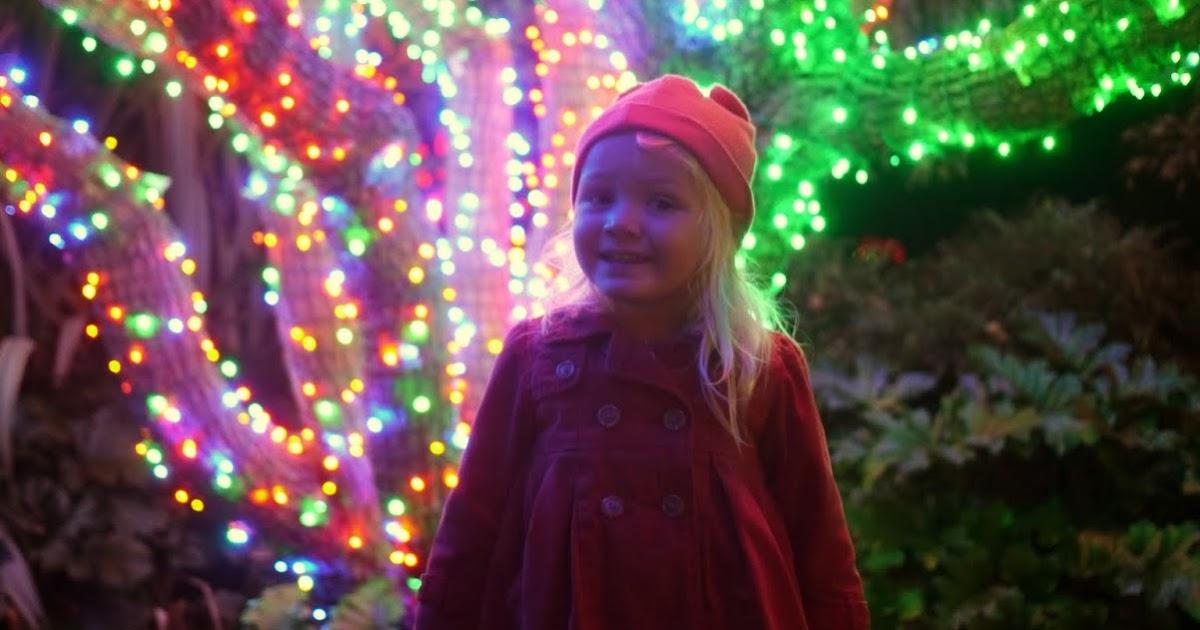 Zoo Lights Oakland Zoo