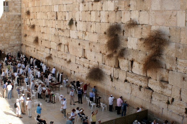 Trump deverá reconhecer Muro das Lamentações como território de Israel