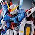 P-Bandai: RG 1/144 Destiny Gundam [Titanium Finish ver.] - Release Info