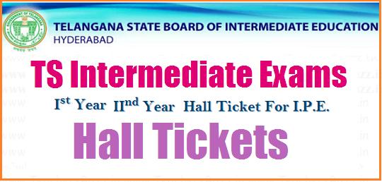 TS Intermediate hall tickets 2018-2019, Results