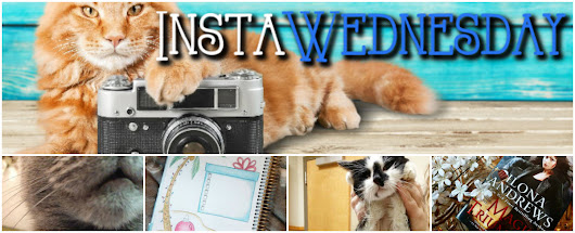 [InstaWed] Counter Cats, HairCuts, And the 'Hoe