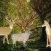 El Ciervo y la Oveja, siendo Juez el Lobo Jose Agustín Ibáñez de la Renteria Fabula