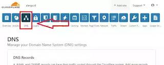 tab DNS