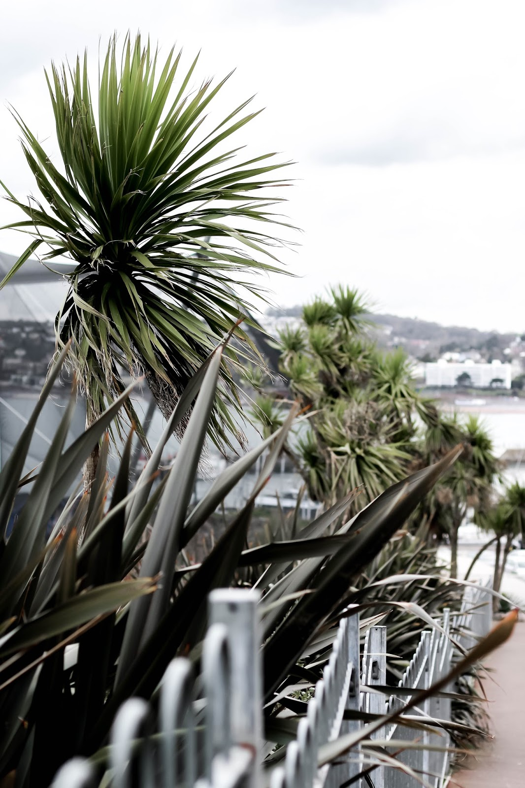 Torquay Area UK Travel Blogger Review