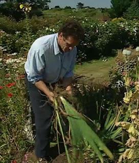 Monty Don on dividing Flag Irises