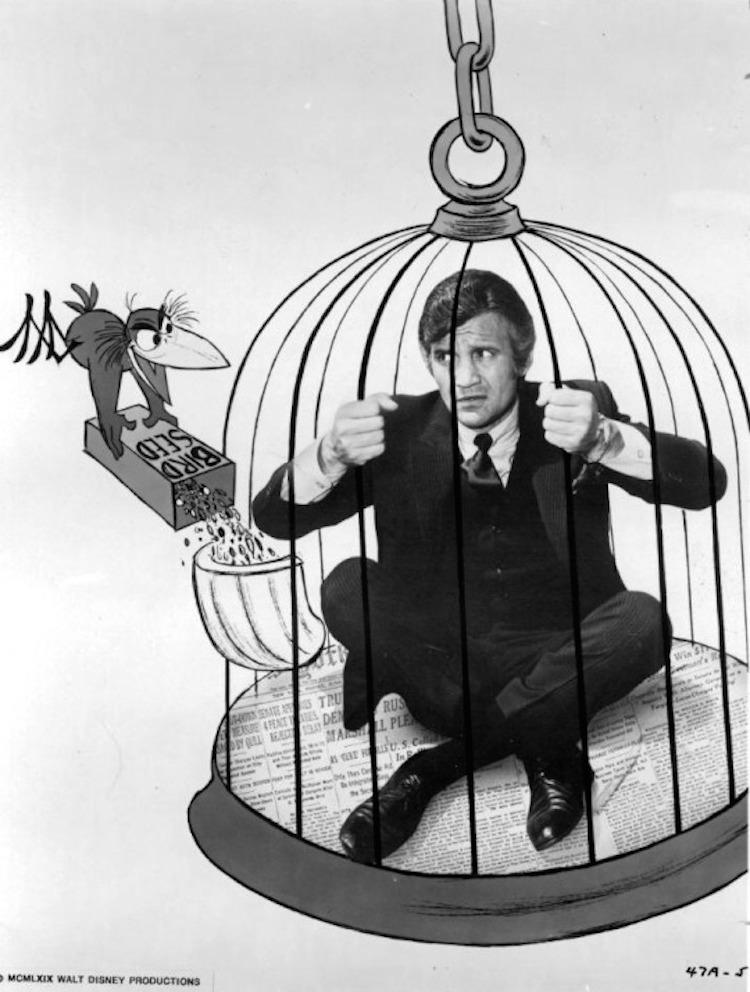 Its Tough To Be Famous 1932 Alfred E Green Douglas: Deja View: It's Tough To Be A Bird