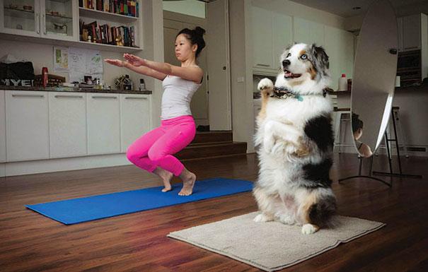 كلب وافى جدا يمارس كل التمارين الرياضة مع صاحبة