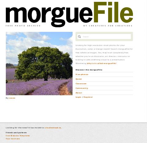 WS Blog Morguefile
