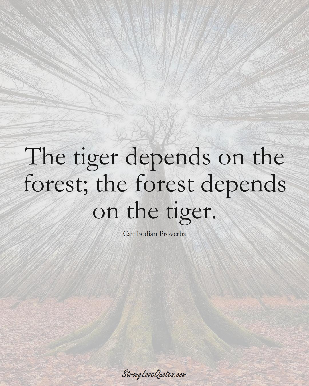 The tiger depends on the forest; the forest depends on the tiger. (Cambodian Sayings);  #AsianSayings