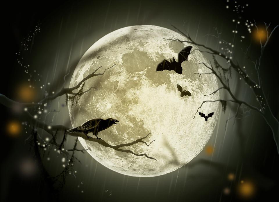 preparar fiesta de halloween de última hora