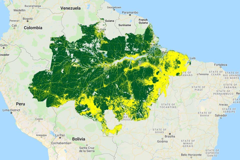 Altamira é A Cidade Que Mais Desmata A Floresta Amazônica