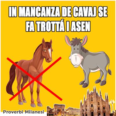 In mancanza de cavaj se fa trottà i asen.  TRADUZIONE  In mancanza di cavalli si fanno correre gli asini.  SIGNIFICATO  Nella scarsità bisogna usare quel che si ha.