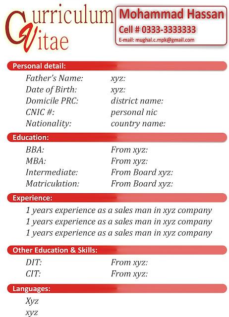 Format Curriculum Vitae Yang Benar Tax Reporting Resume