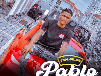 DOWNLOAD MP3: Tswag Lee -  Pablo Grey