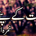 Jannat Kay Pattay Novel by Nimra Ahmad Full pdf