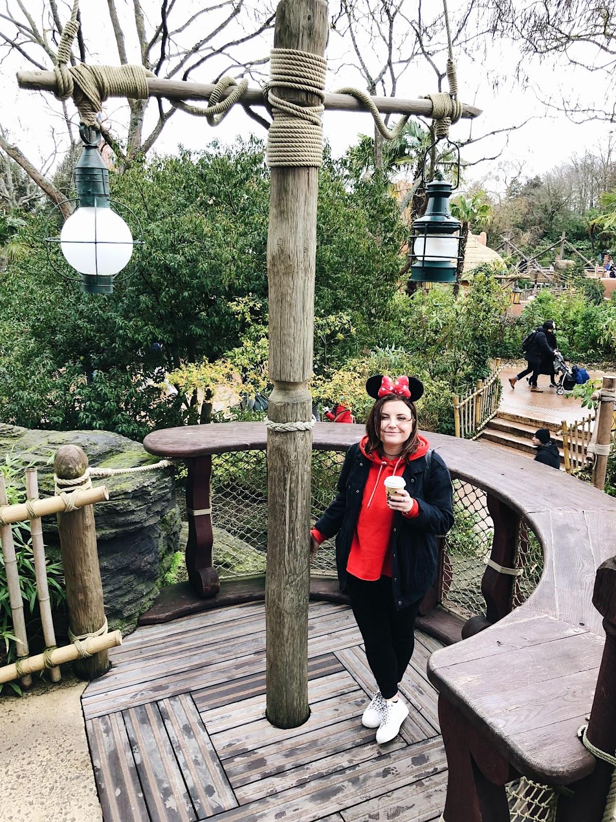 a Disneyland Paris wishlist - see the stars