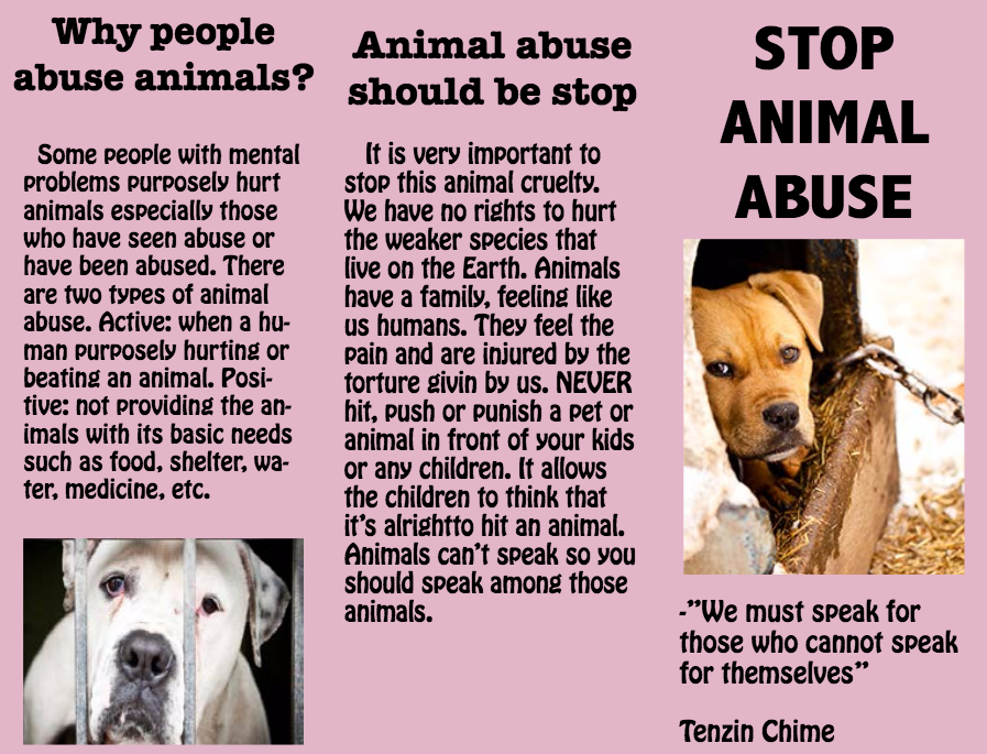 why animal cruelty should be stopped Animal abuse essay: this is unacceptable for people to do this to other living creatures, and it should be stopped animals have rights, too.