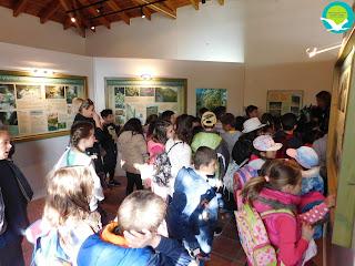 Επίσκεψη του 1ου Δημοτικού σχολείου Πάργας στο κέντρο πληροφόρησης Αμμουδιάς