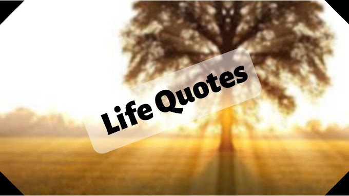 Best 15 Quotes About Life. Life Quotes Number 6, Start Paving Another One