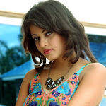 Sneha Ullal in Cute Dress Photos