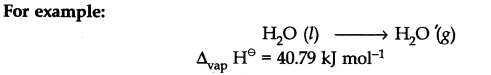 class 11 chemistry chapter 6 ncert solutions