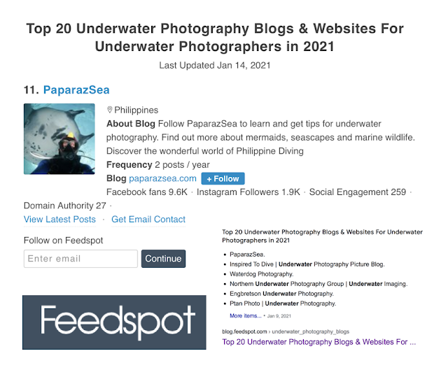 Top Underwater Photography Blogs 2021 Worldwide