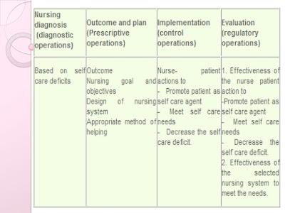 orem nursing action diagram  #9