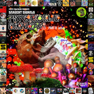 """Fuzzy's new psych compilation on Bandcamp is """"Sargent Signals Psychedelic Genocide Part B 2020"""""""
