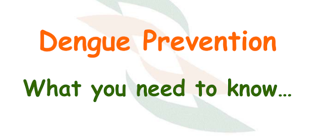 Dengue Prevention- What you need to know What is dengue fever? Dengue Fever is an illness caused by infection with a virus transmitted by theAedes mosquito./2019/09/dengue-prevention-what-you-need-to-know-complete-information-ppt-download.html