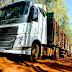 EMPREGOS| Eldorado Brasil contrata 90 motoristas e anuncia novas vagas