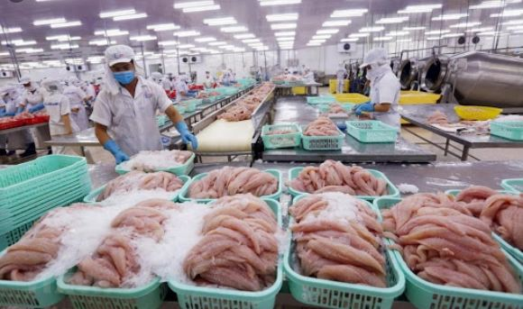 العثور على فيروس كورونا في المأكولات البحرية المجمدة في الصين