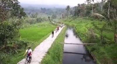 Jatiluwih Cycling
