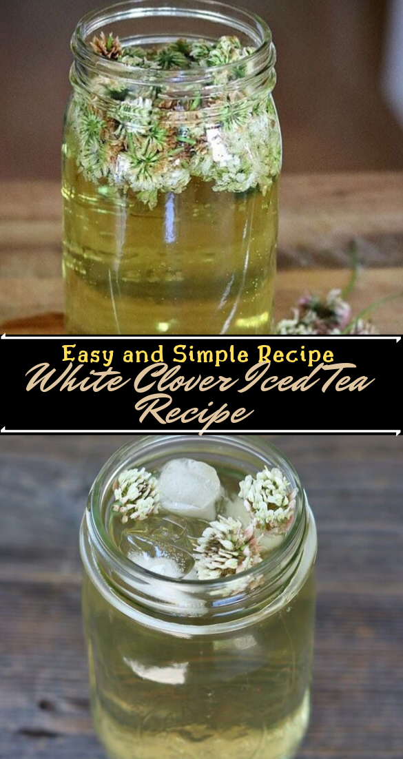 White Clover Iced Tea Recipe  #healthydrink #easyrecipe #cocktail #smoothie
