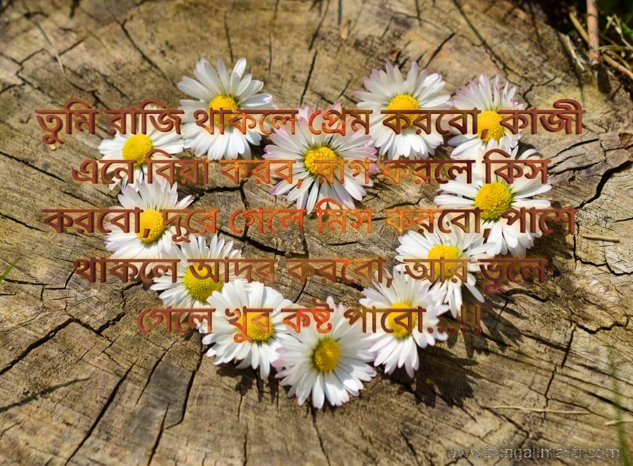 bangla Shayari Images Shayari Photo