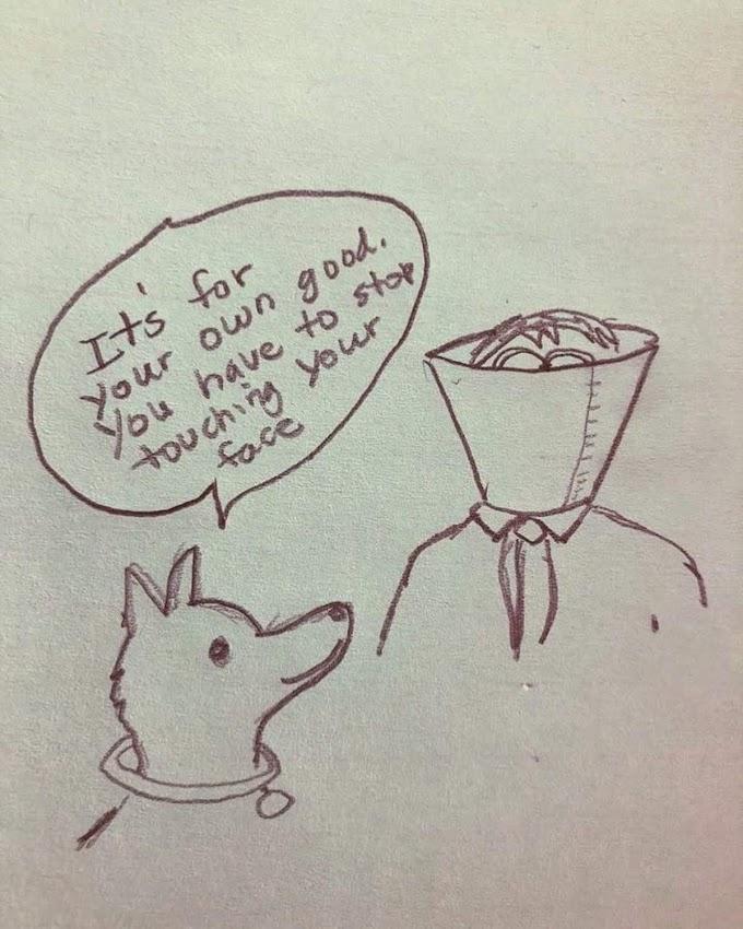 新型コロナウイルスの感染が怖いのに、マスクが手に入らないという方にとっても朗報の愛犬🐶のアドバイスに従うナイスなアイディア‼️😂