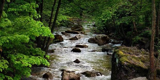 Rüyada dere görmek ne demek? anlamı nedir? rüyada derede yüzmek, rüyada akarsu nehir görmek, rüyada dereye düşmek anlamı nedir?