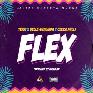 [Mp3] Terri X Bella Shmurda X Ceezi Milli – Flex