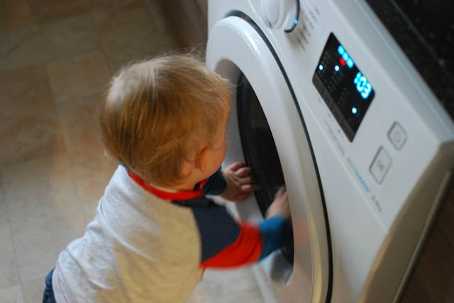 toddler looking into washing machine