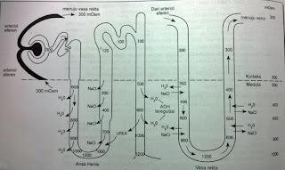 Sistem Arus