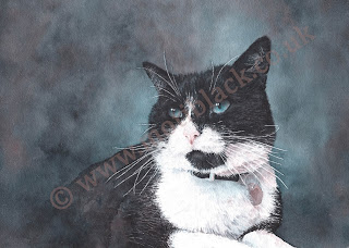 A watercolour painting of a black and white cat