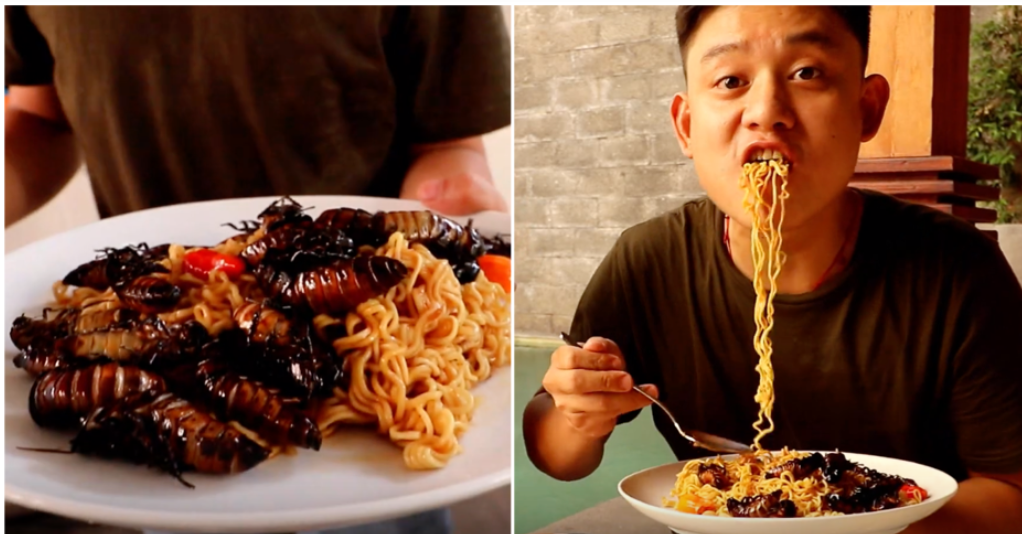 cockroach, noodles, indomie