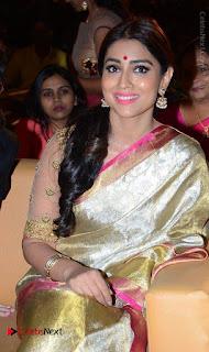 Actress Shriya Saran New Images in Silk Saree at Gautamiputra Satakarni Audio Launch  0004.jpg
