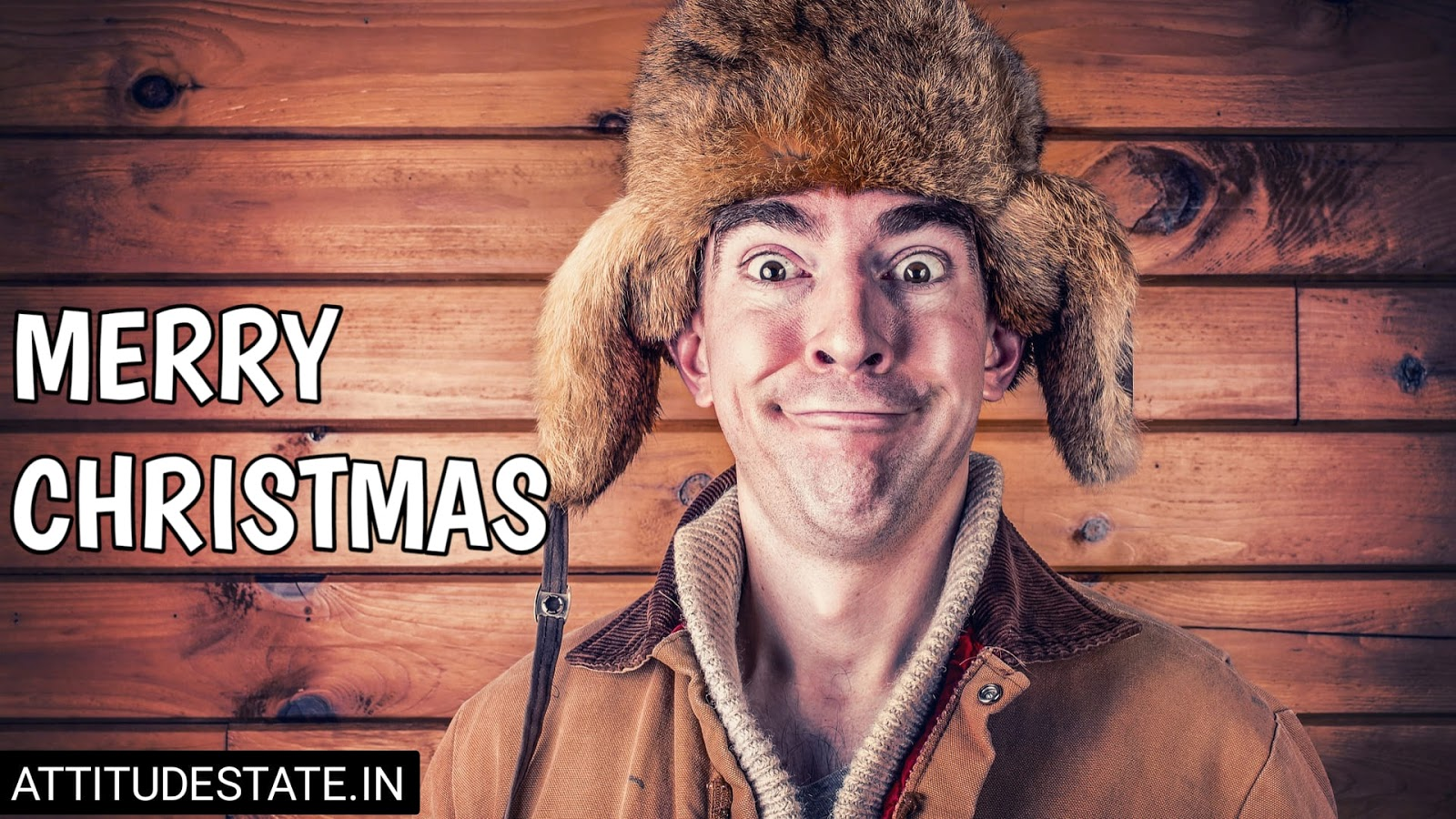 funny merry christmas dog pics